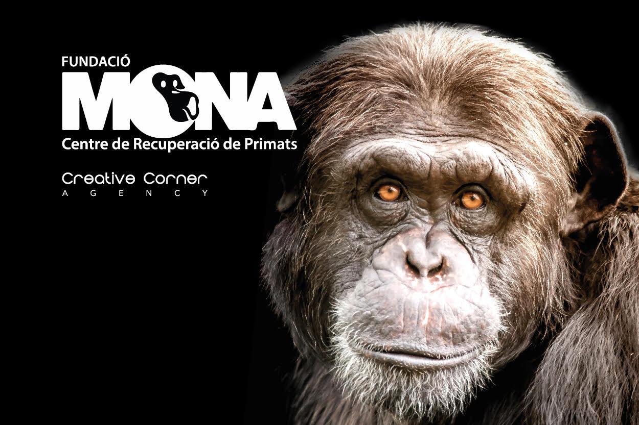 El nostre suport a la Fundació Mona