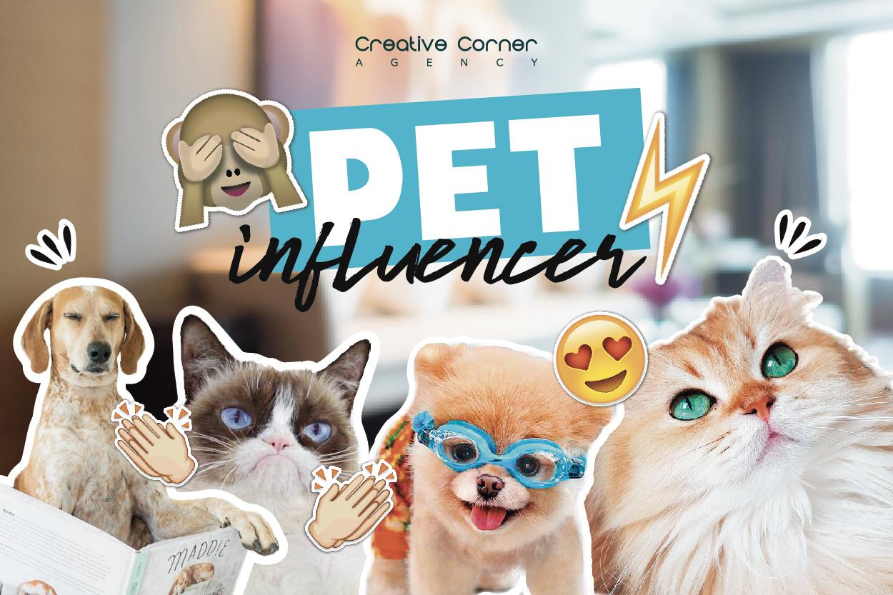 Pet Influencer: mascotes i xarxes socials